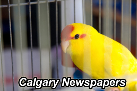 Calgary Marketing Calgary Newspaper Advertising List Alberta Business